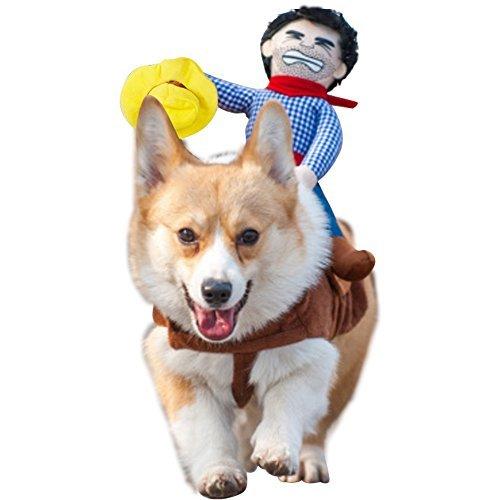 Cowboy Rider Style Dog Costume - AmzChart