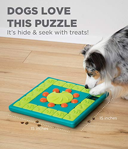 Interactive Puzzle Game Dog Toys - AmzChart