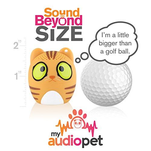 Pet Mini Bluetooth Speaker - AmzChart