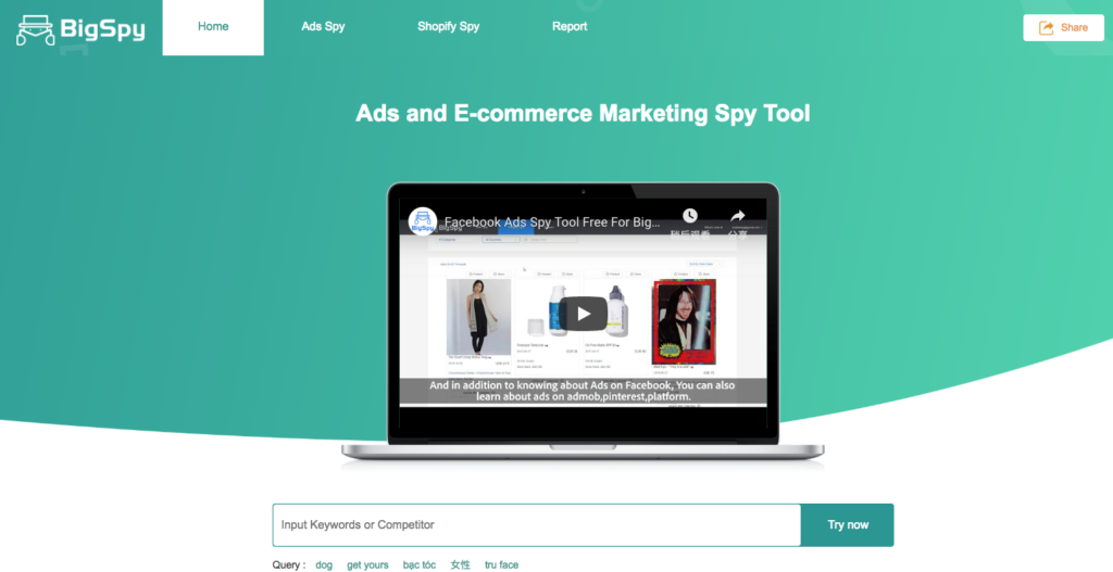 bigspy shopify ads spy