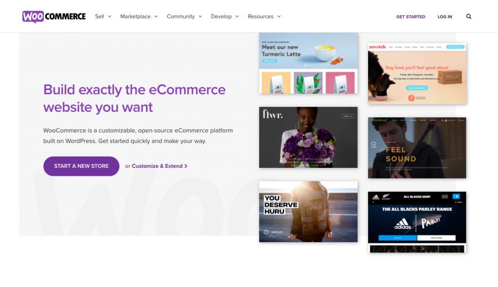 the homepage of WooCommerce -- FindNiche